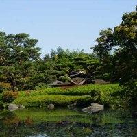 カメラ片手に 心を癒す日本庭園
