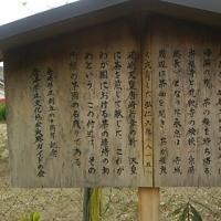 志賀越道の推定 志賀里編