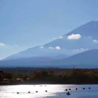 秋の富士五胡風景