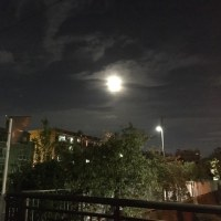 今夜も月がきれい・・・