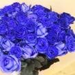 青いバラが届きました!ありがとうございます。感謝しております。