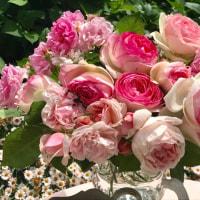 薔薇とアンティークマイセン♪
