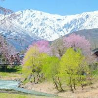 桜咲く・・・白馬山麓・・・安曇野・・・姫川・・・大出の吊橋の風景