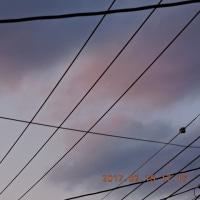 2/20 昨日の夕方はなんとも言えない色合いの空だった