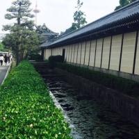 日本で京都(^ν^)
