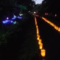 第4回野火止用水灯明まつり盛会のうちに終了