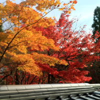 京都東山Ⅱ
