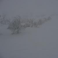 スキー 2017/01/05
