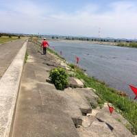 天竜川河川敷