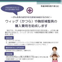 東京都初のウィッグ助成金制度