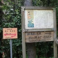 高尾山~景信山