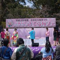 おおむら桜まつり 長崎街道シュガーロード さくらカフェ 2017・4・2