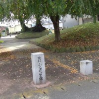 小金井宿から石橋宿へ ①(旧日光街道・奥州街道を歩く 53)