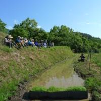 自然菜園スクール(自然稲作発酵コース)田植え第一弾