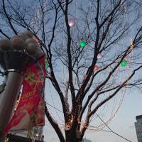 寒波と一緒に名古屋へGO!!!!!