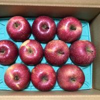 株式会社サンデーから株主優待のりんごが届きました