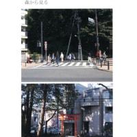 藤原香織写真展 森を見る森から見る 大阪ニコンサロン JUNA21