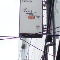 今日のお昼ご飯  青山の杏亭