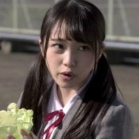 向井地美音ちゃん 豆腐プロレス♯6