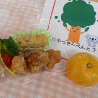 誕生会☆ピクニック