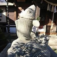 八坂神社の 狛犬ならぬ狛鯉