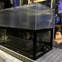 中古 1800×1000×600アクリルオーバーフロー水槽セット
