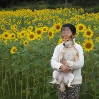 夢、秋のお花見に行く!