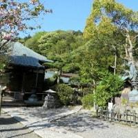 鎌倉を歩く 23 光触寺の塩嘗地蔵