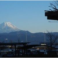久しぶりの山梨、久ブルの富士山