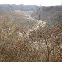 2017年3月25日(土) 和泉山系南部、川上新道で昭和山を再訪!