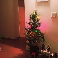 アルマさんと一緒に迎えるクリスマス