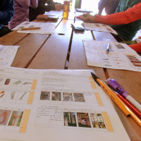 【LOC】4/23 マルチピッチクライミングコース スタートアップ講習