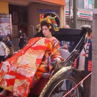 丸山華まつり 花魁道中 宮崎真実 2016・11・13