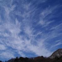 2月5日(土) 晴 緩やかに春よ来い