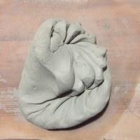 菊モミ / chrysanthe-knead / 菊花揉 / 菊花揉