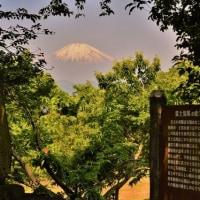 今日の富士山・・・