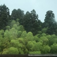 金沢も今日は雨だった。