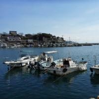 鞆の浦まで来たので少しだけ散策してみた。保命酒も買わなくてはね。