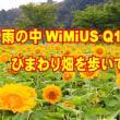 雨の中WiMiUS Q1を持って、ひまわり畑を歩いてみました。