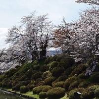 上杉神社 Vol.3