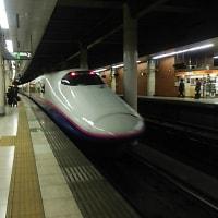 ブログ170115 新潟温泉旅行2~復路  東京へ