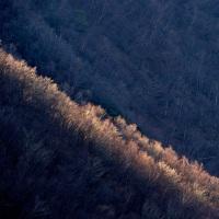 晩秋の山へ 天神丸編