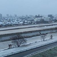 初雪、不要不急の外出はお控えくださいとかです。