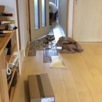 キッチン水栓取り替えと床の一部補修