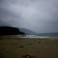 屋久島に修学旅行で行ってきました