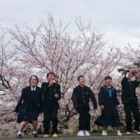 桜をバックに・・・♪