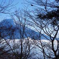 冬の長者ヶ岳☆.。.:*・