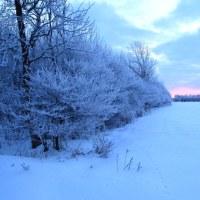 1月14日の朝 -19℃