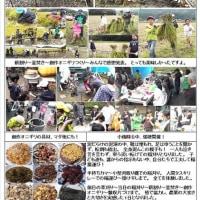 糸島市&教育委員会様の後援事業への報告書作成に取り掛かる。