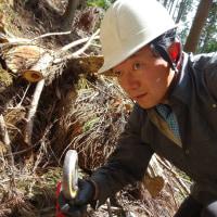 急斜面での森林作業を経験して